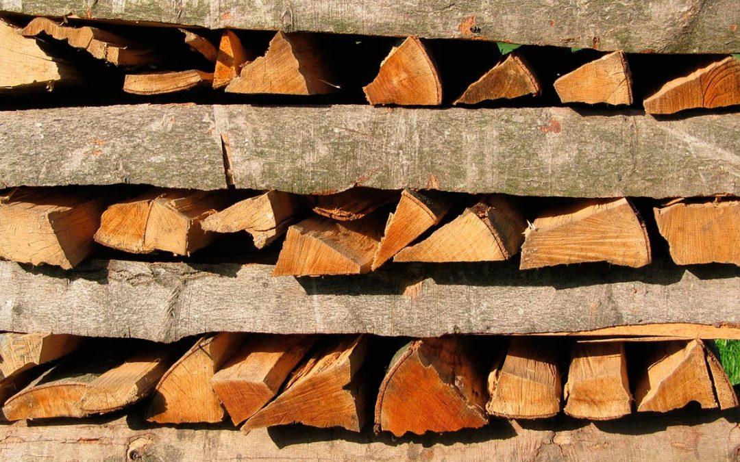 ¡Cuidado! agentes nocivos de la madera